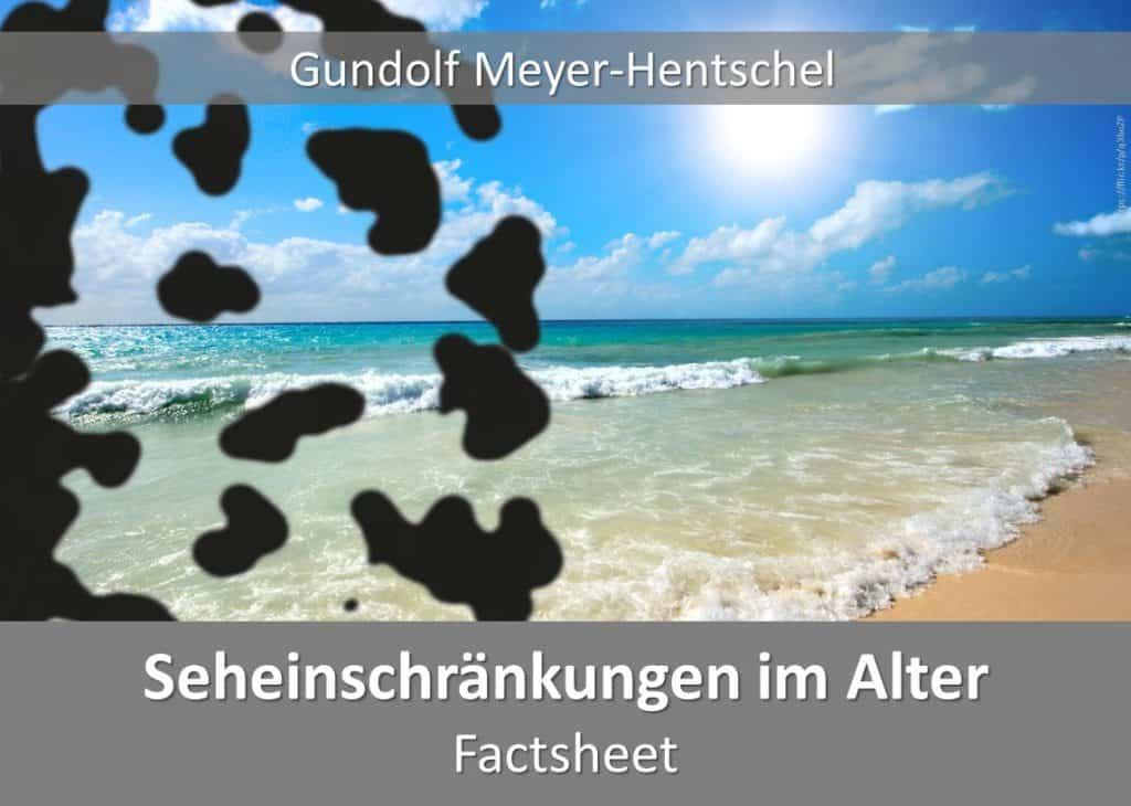 Simulationsbrillen FactSheet Seheinschränkungen im Alter