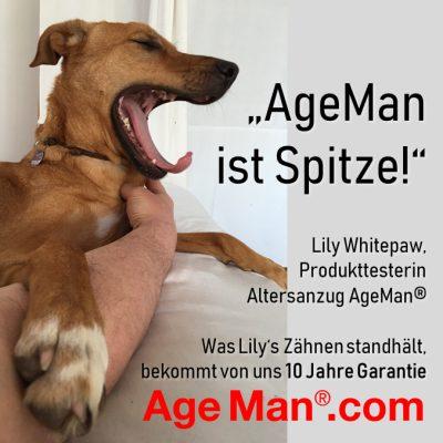 Hund testet den Altersanzug AgeMan